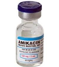 Amica review