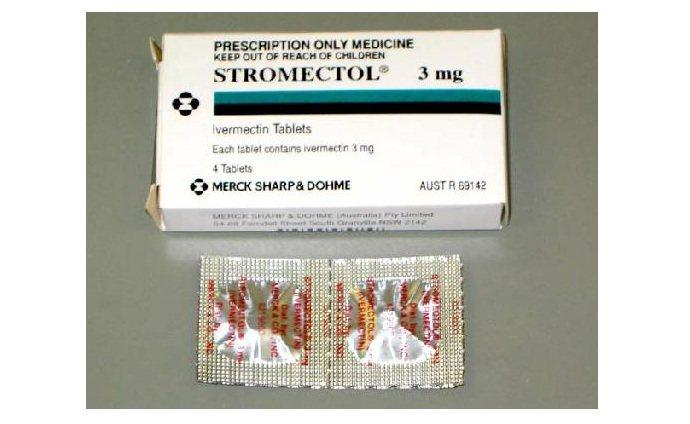 Stromectol 3 Mg Price